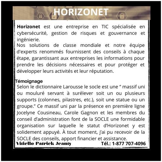 _P2AAAA_2_HORIZONET_(2)